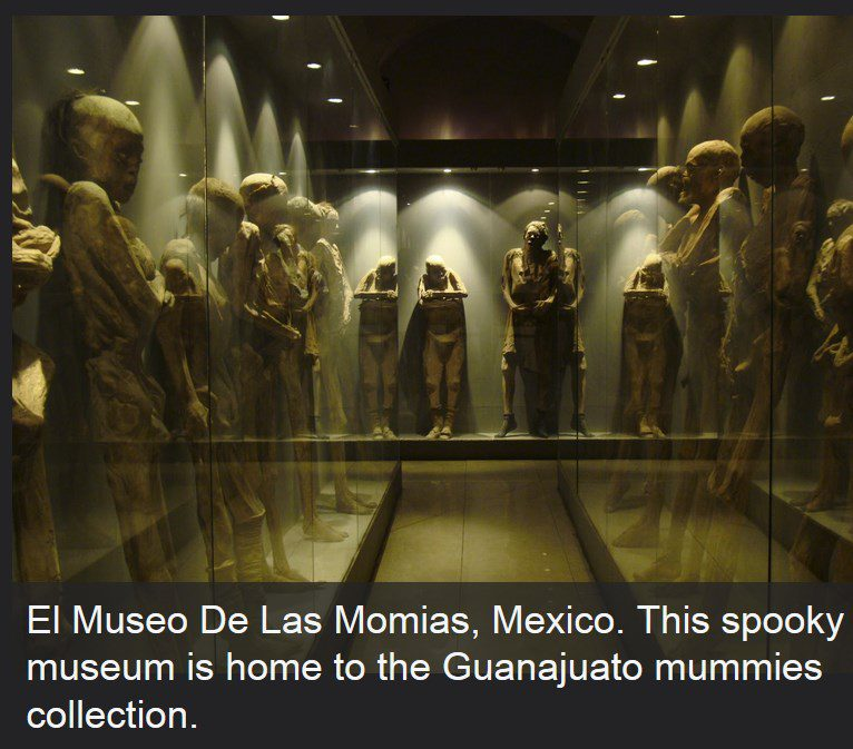 horror movies scary stuff museums vacations