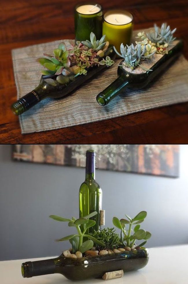 funny-clever-alternatives-every-day-objects-wine-plants