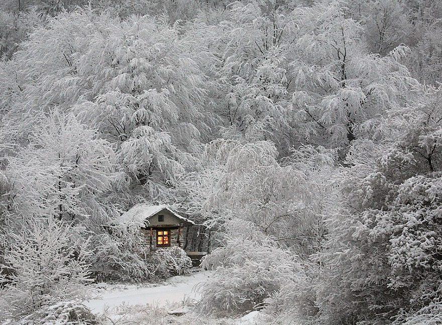 A Hut In Winter