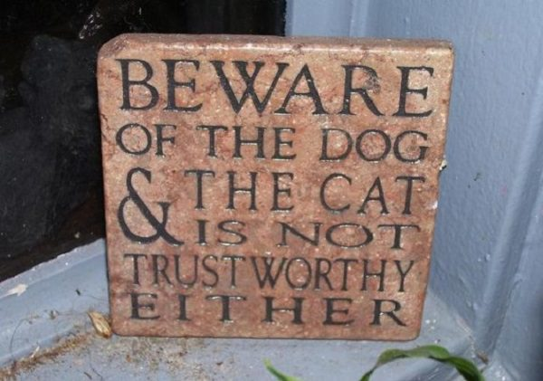 funny dog signs