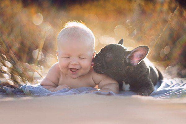 baby and french bulldog 6