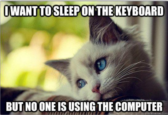 cat logic 1