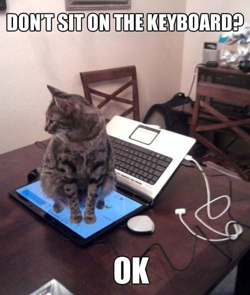 cat logic 3