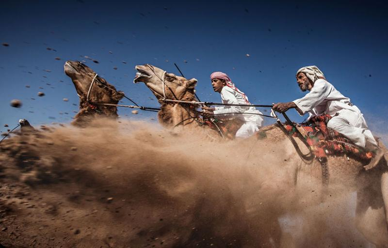 National Geographic Photo Contest 3