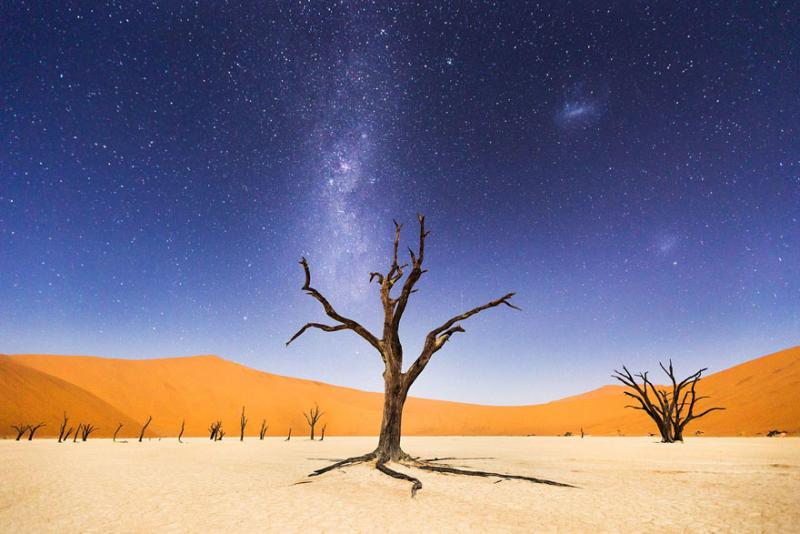 National Geographic Photo Contest 4