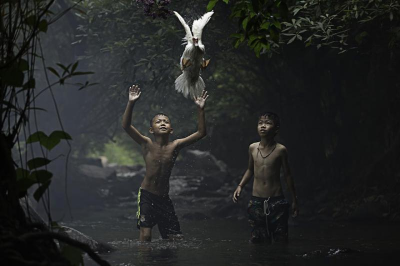 National Geographic Photo Contest 5