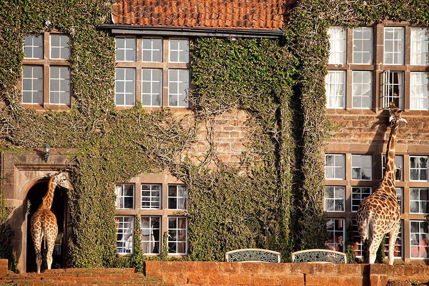 mythical hotels 14