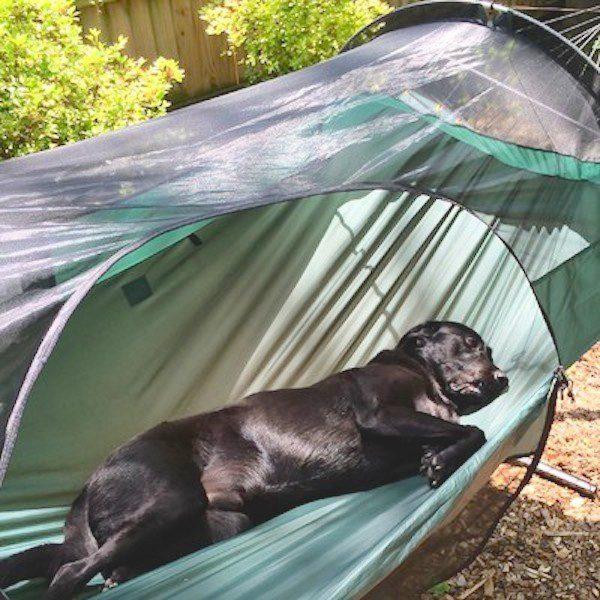 tent hammock 9