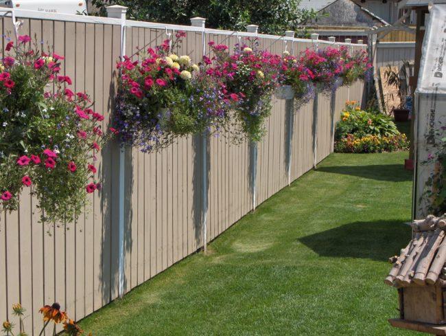 beautiful fences