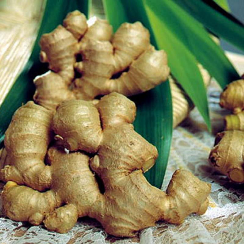 benefits of ginger 10