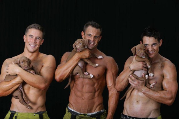 firefighters with puppies