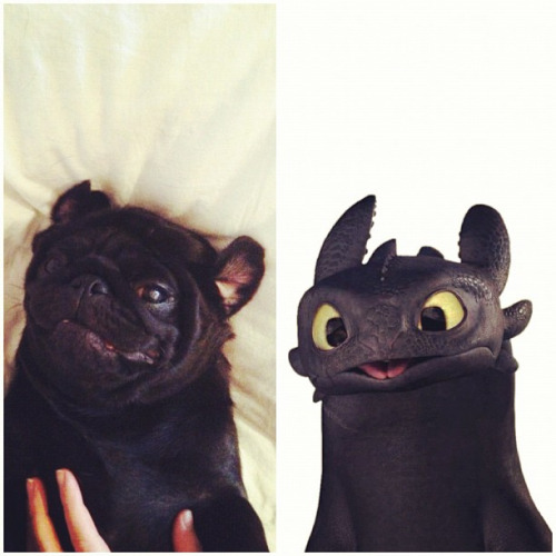 funny resemblance