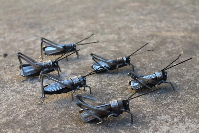 metal insects 4