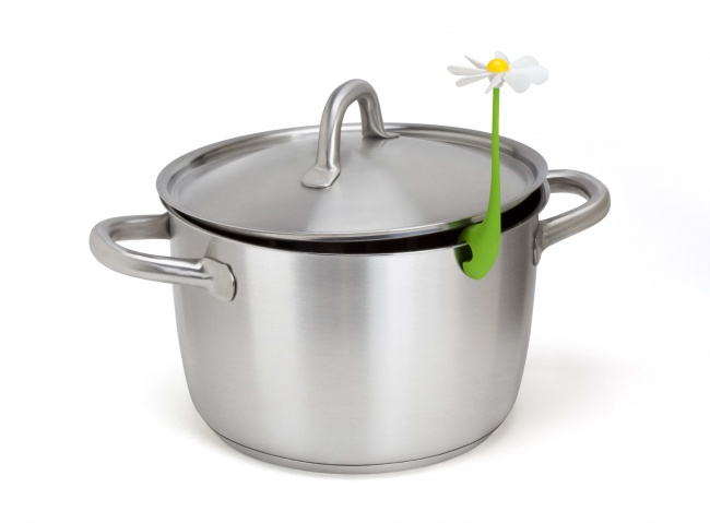 device for cooking 6