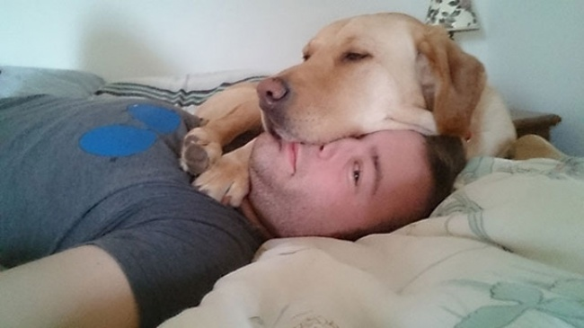 dogs clueless of personal space 15