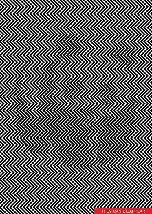hidden animal optical illusion