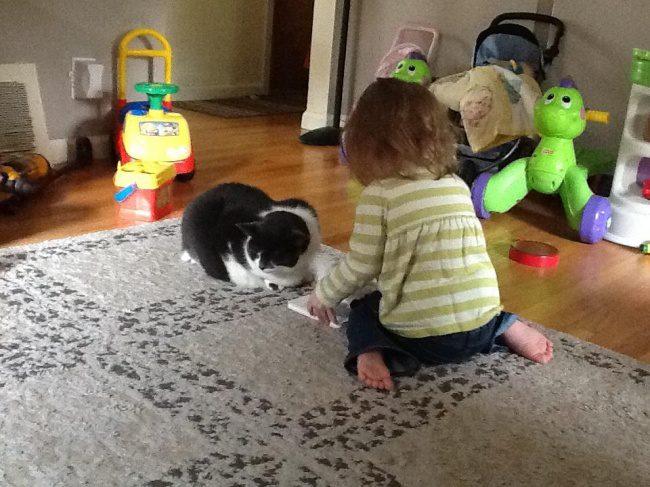 kids faultless upbringing