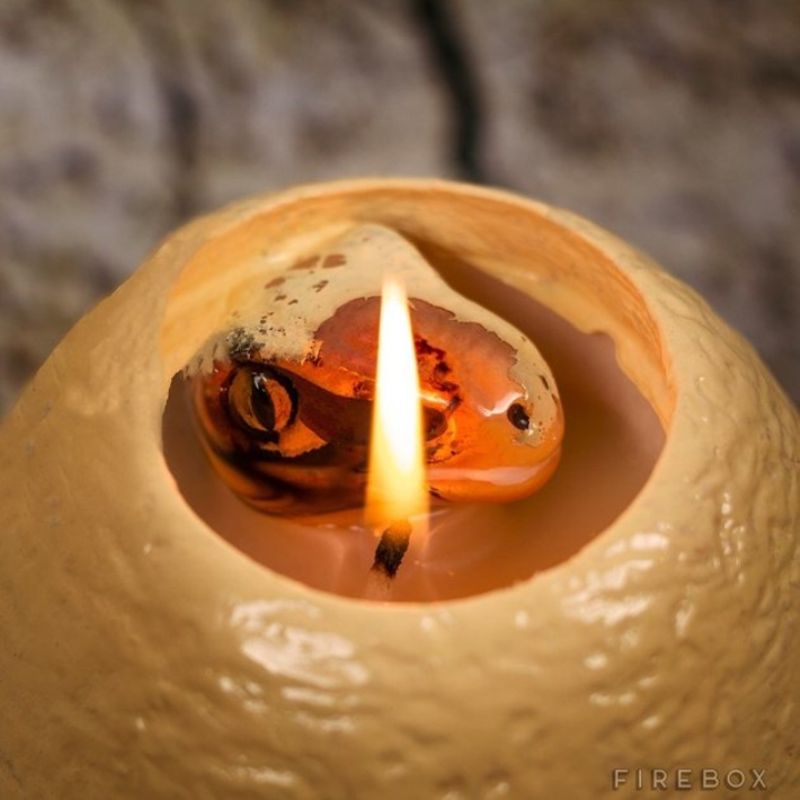 mark dinosaur egg candle 2