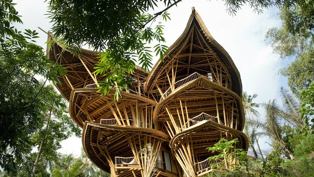 bamboo homes 1