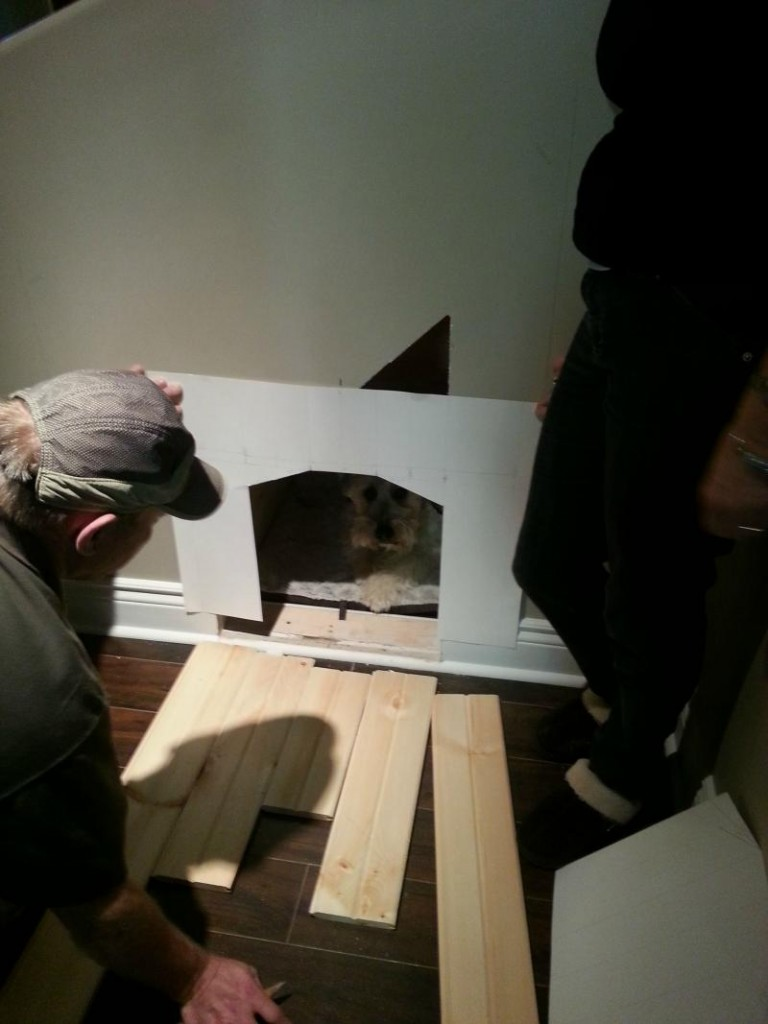 dog house under the stairs 3