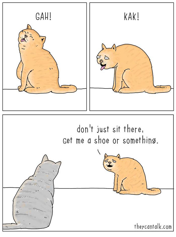 if animals can talk 7