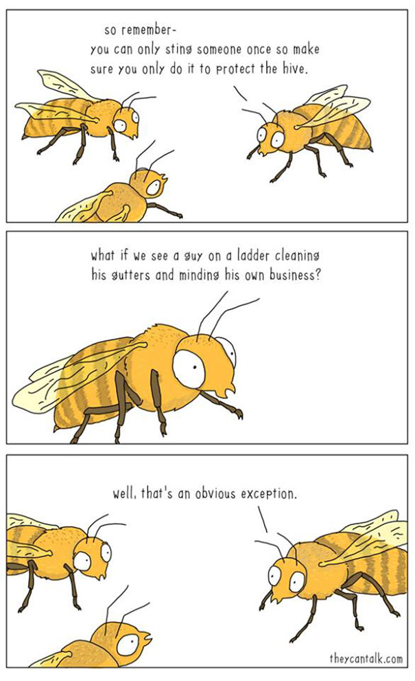 if animals can talk 9