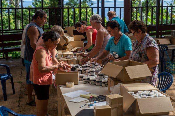 pitcairn begging for new residents 12