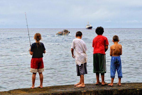 pitcairn begging for new residents 6