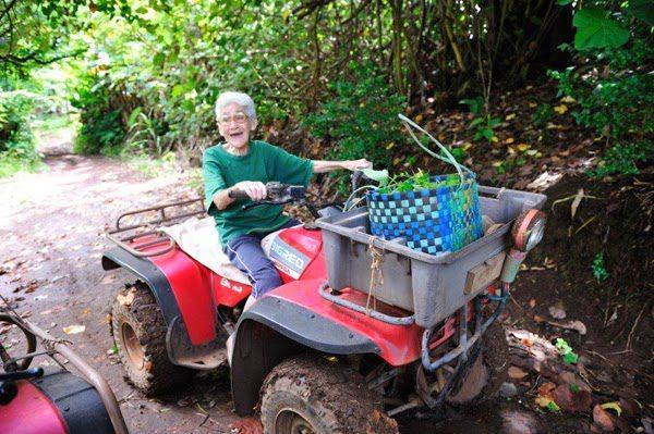 pitcairn begging for new residents 9