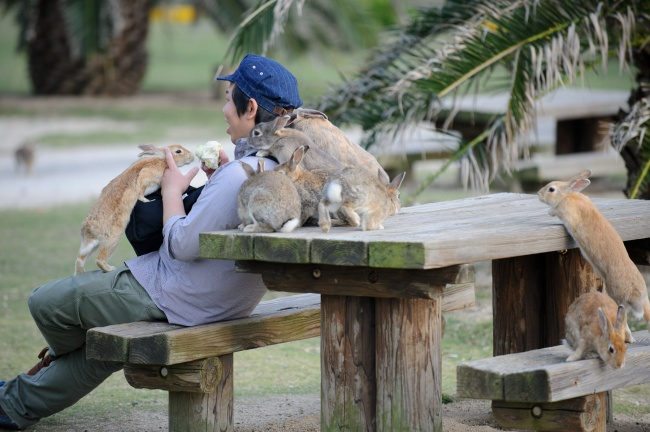 places live alongside exotic animals 1