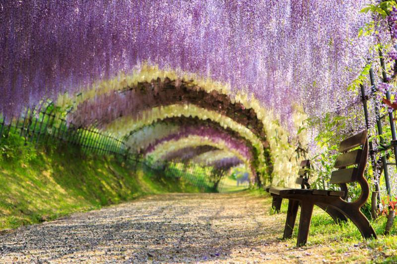 surreal landscape 11