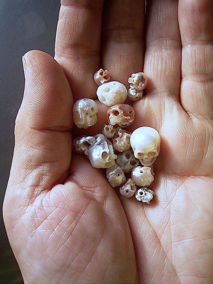 artist carves pearls into skull 1