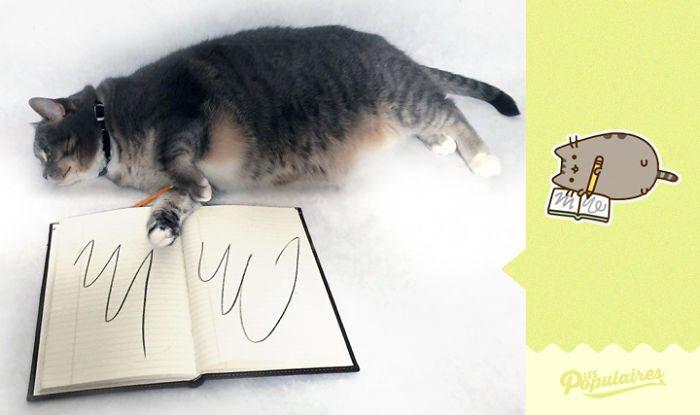 cat recreates pusheen stickers 10