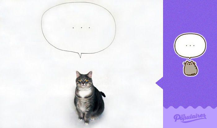 cat recreates pusheen stickers 8