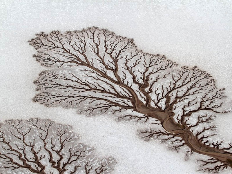 mother nature optical illusions 10