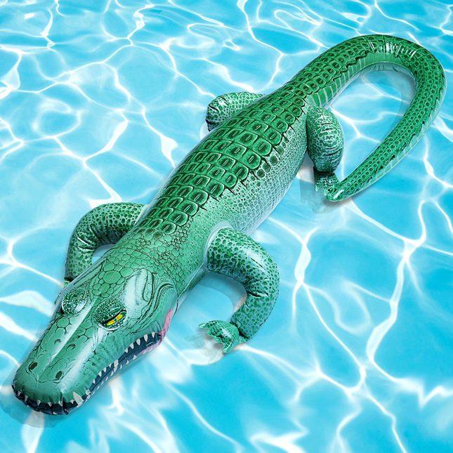 pool floats 10
