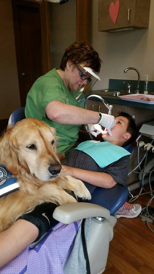 dog dentist assistant