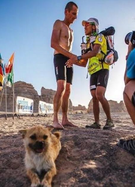 dog joins race found owner