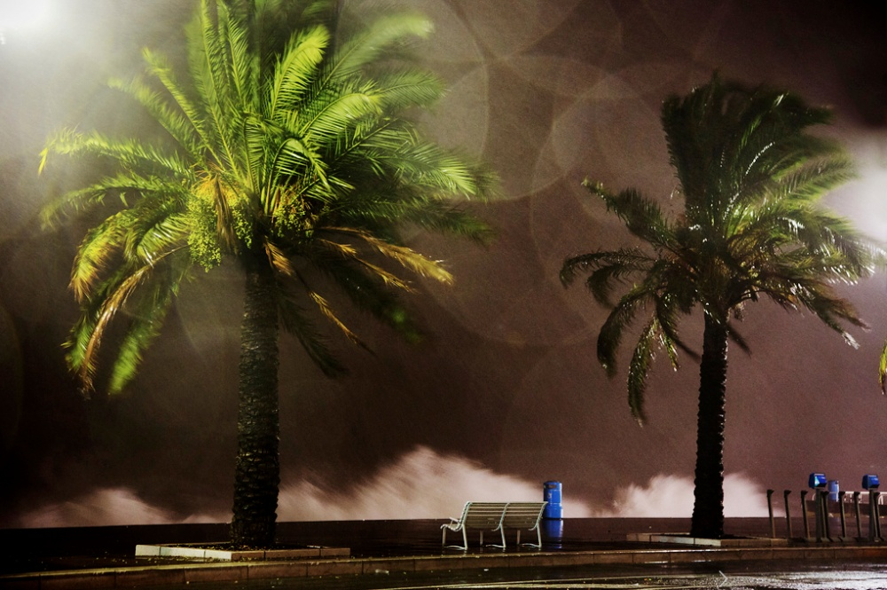 gorgeous photos of rain 13