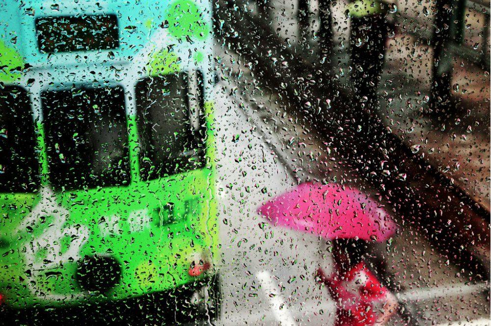 gorgeous photos of rain 9