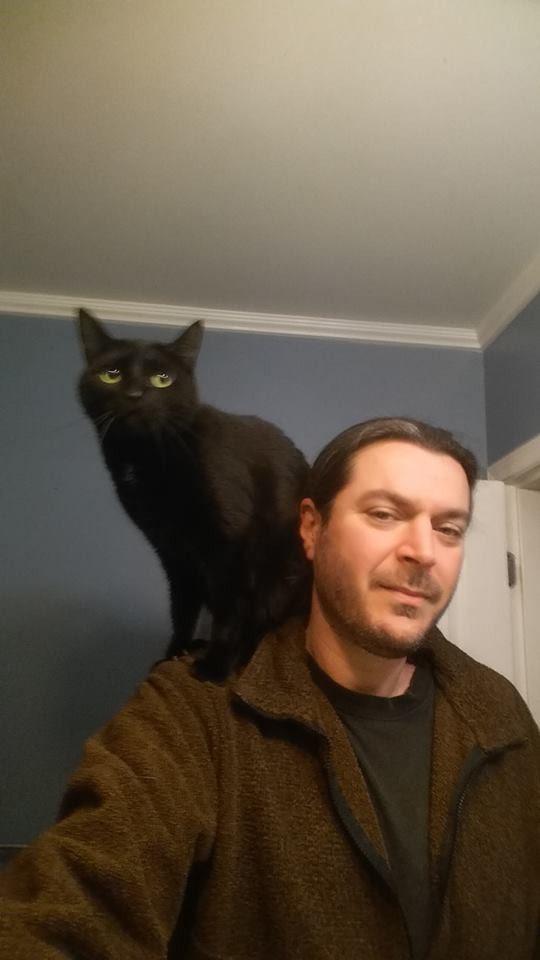 driver saves black cat