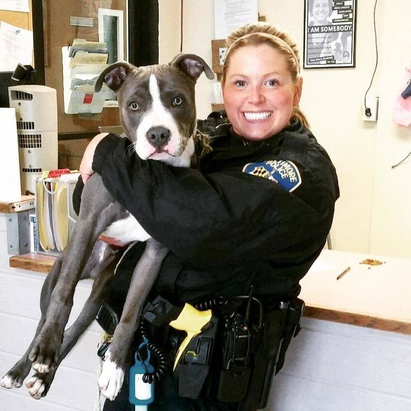 officer rescues dog