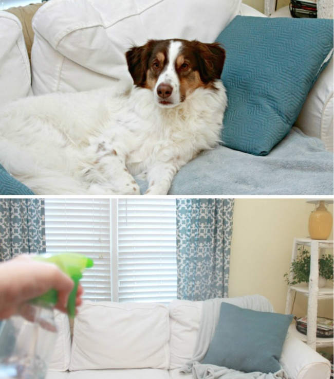 house cleaning tricks