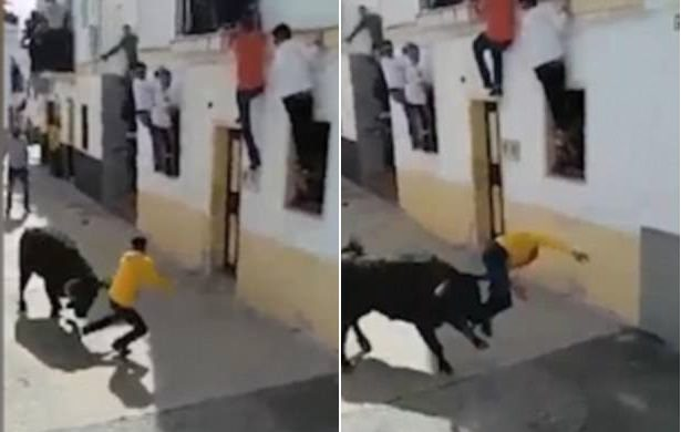 man gored by bull