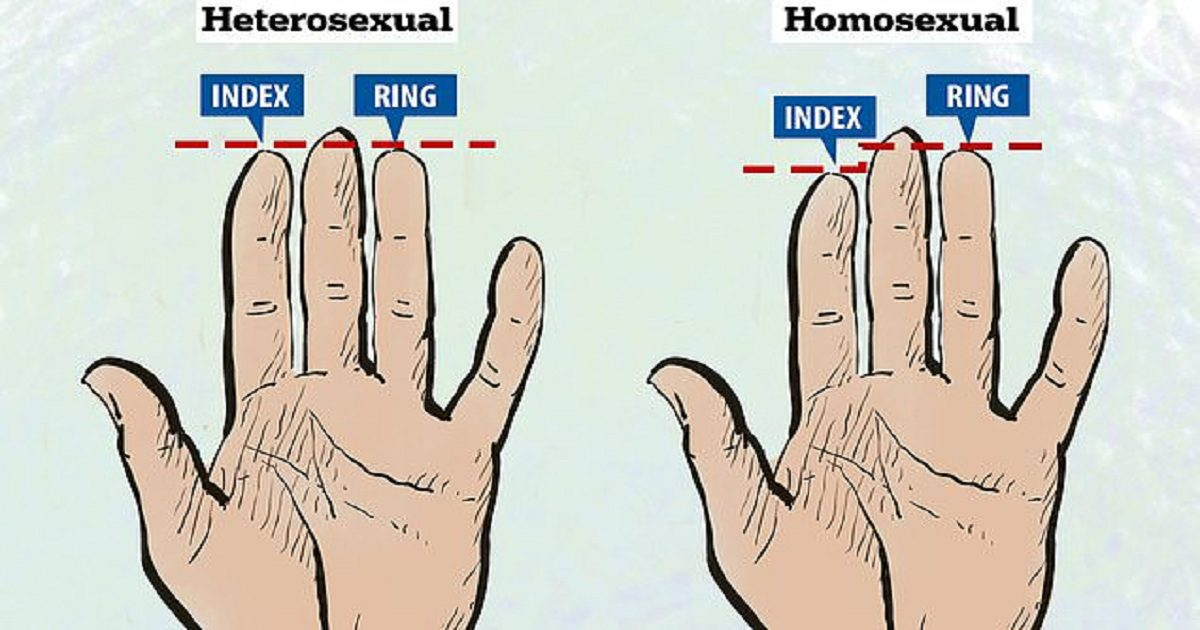 Finger length female sexuality