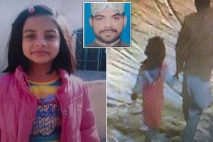 zainab's murder hanged