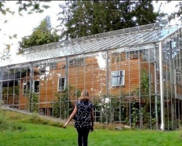 swedish couple greenhouse
